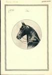 3rd Fontbonne Spring Horse Show by Fontbonne College